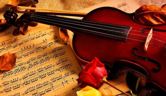violin-notes-roses-music